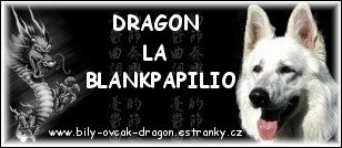 DRAGON-APA
